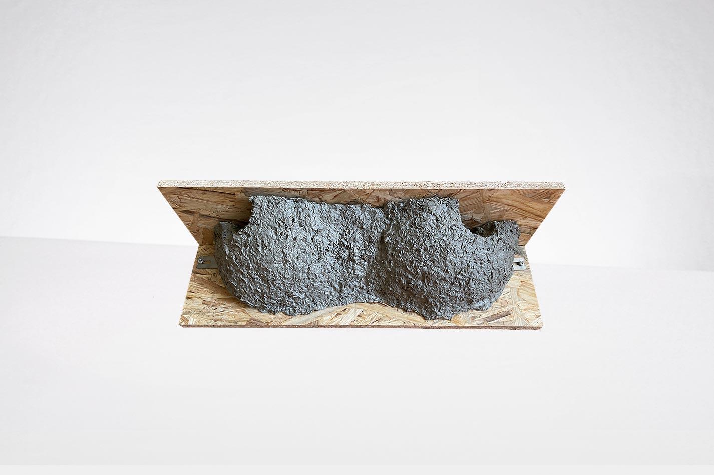 Mehlschwalbennest - Doppelnest für Mehlschwalben