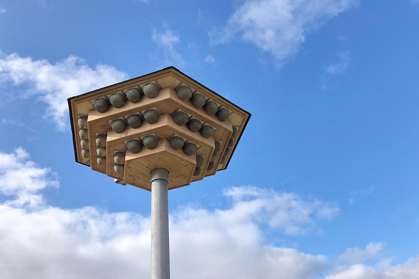 Ein dreistöckiges Schwalbenhaus aus Holz mit Kunstnestern für Mehlschwalben auf einem Stahlmast mit einer Klangattrappe